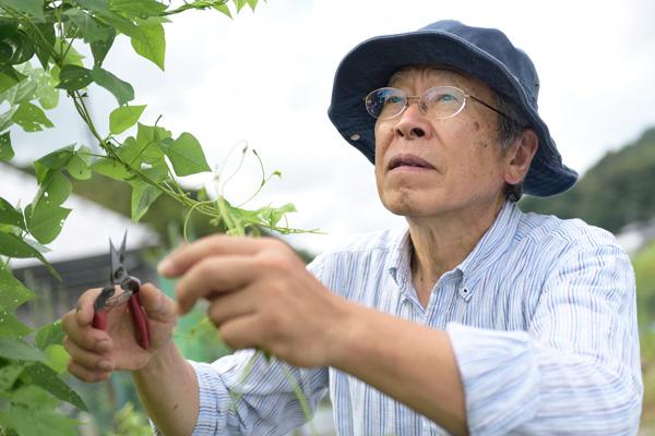 おかやまオーガニック・農家・おかやま・農業・地産地商・安全で安心な農産物