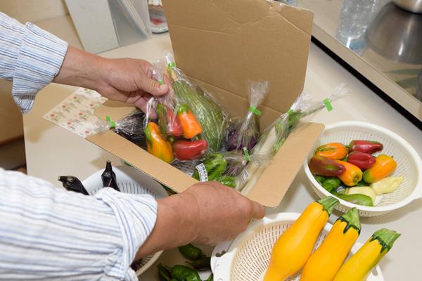 おかやまオーガニック・有機野菜販売・おかやま・農業・農家・農園・新鮮野菜