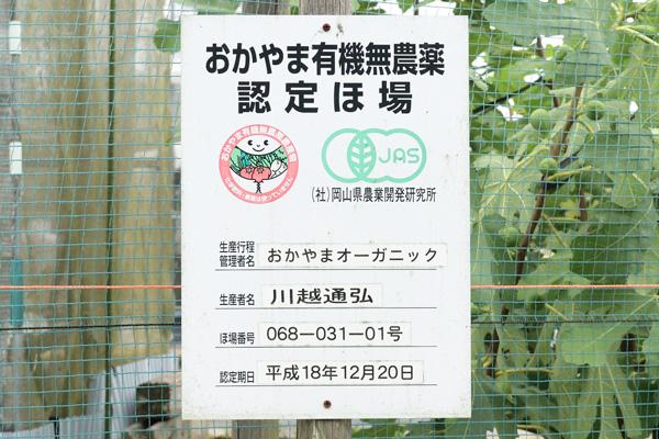 おかやまオーガニック・おかやま・農業・農家・化学合成肥料不使用・農薬、化学肥料使用しない